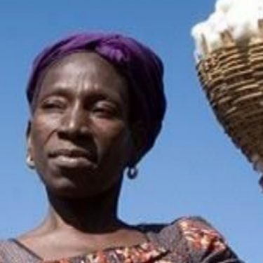 Digital Payments in the Zambian Cotton Industry